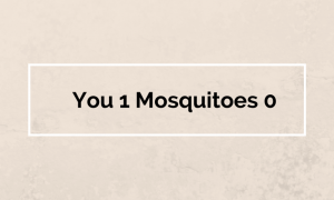 You 1 Mosquitoes 0