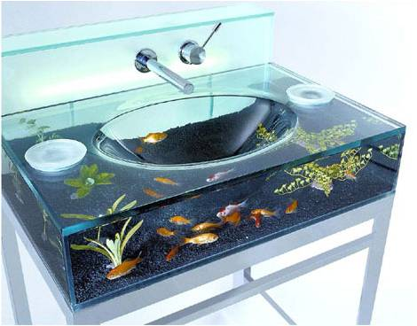 sink Could Having a Fish Tank at Home Improve Your Health?