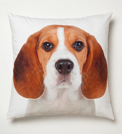 dog pillow Holiday Home Gift Guide: The Animal Lover