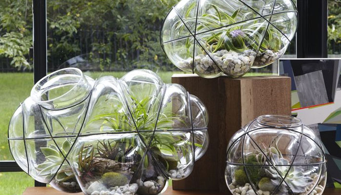 A Stylish Terrarium For The Home Gardener With Limited Space
