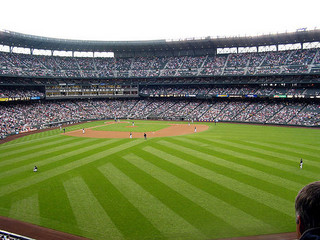 outfield grass How to Make Your Lawn Look Like a Baseball Outfield