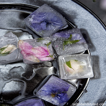 icecubes 10 Fun Ideas for a Sizzling Summer Party | Holiday | Coldwell Banker Blue Matter
