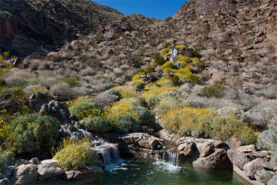 palm springs 4 A Private Oasis in Palm Springs