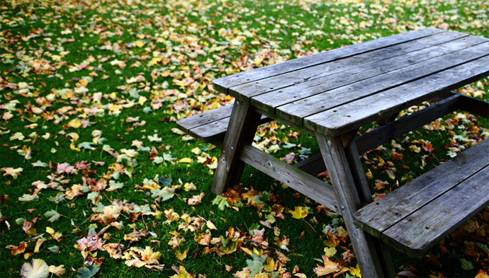 autumn_table