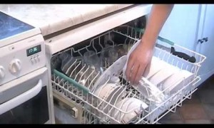 Cooking With Your Dishwasher: Genius or Disgusting?