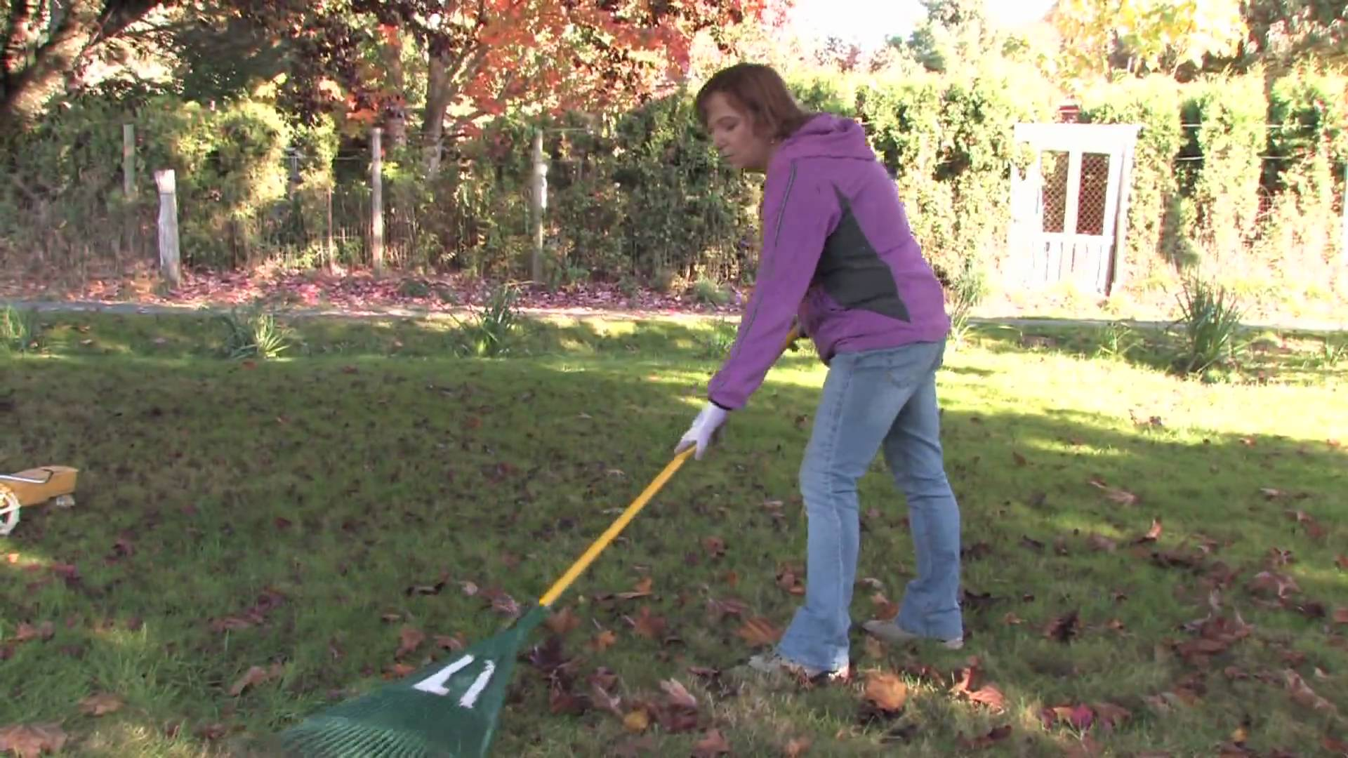 You Really Don't Know How to Rake Leaves