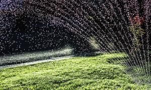Lawn-Sprinkler-Robert-Couse-Baker.jpg