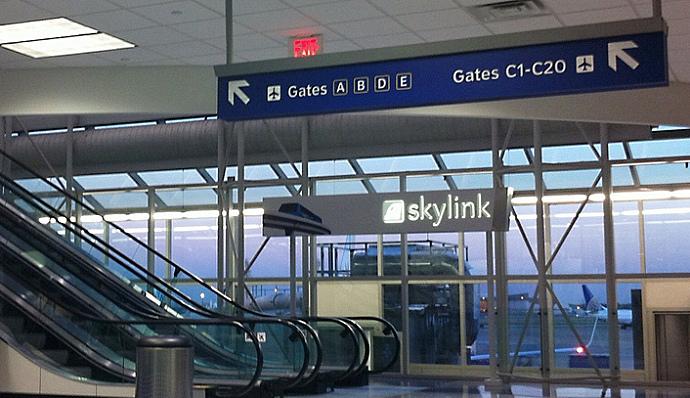 Skylink.jpg