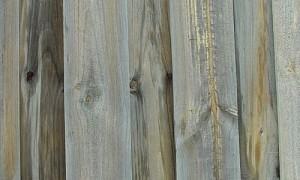 Wooden_fence_slats.jpg