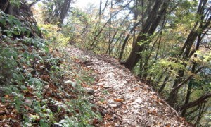 hiking-trails-original.jpg