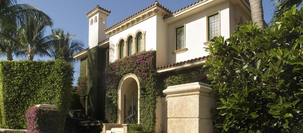 house-vines.jpg