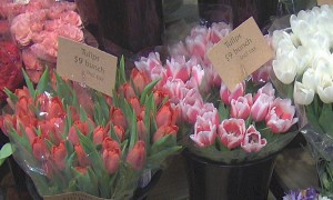 spring-decorating-ideas-tulips.jpg