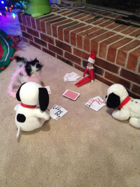 Elf on the Shelf, playing cards