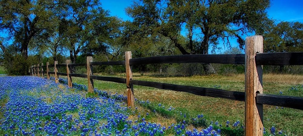 Texas Home Decor For Your DFW