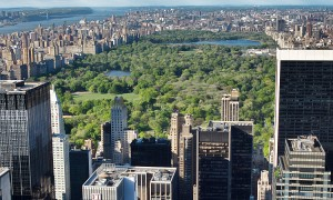 NYC_-_Manhattan_-_Central-Park-Jean-Christophe-BENOIST.jpg