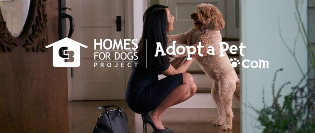 Coldwell Banker Home for Dogs Project