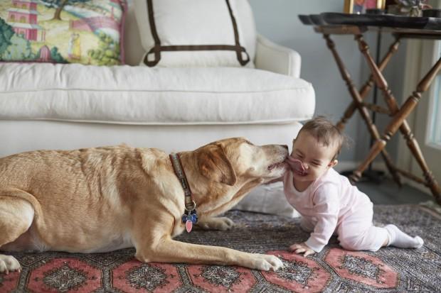 16_Dog_Licking_Baby_1864