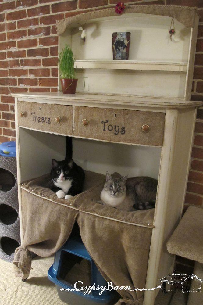 Dresser for cats