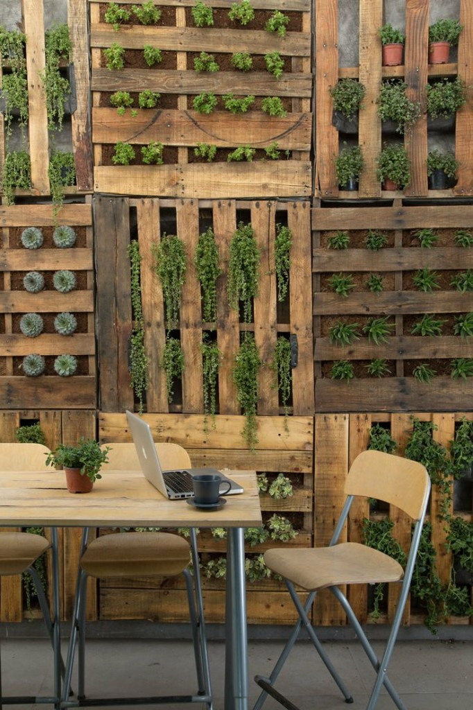Vertical garden ideas using pallets photograph vintage pal for Vertical pallet garden