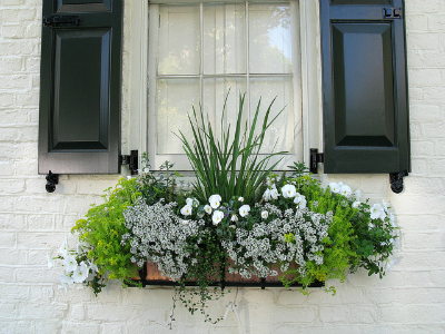 Small Outdoor Space: Hang a Window Box