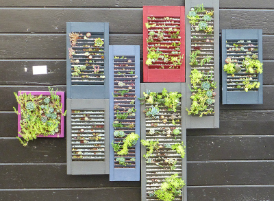 Small Outdoor Spaces: Create a Vertical Garden