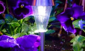 Garden_Light.jpg