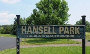Welcome-to-Hansell-Park-small.jpg