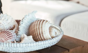 Beach interior decor: sea shells and lanterns on the wooden coffee table, natural colors. Detail of