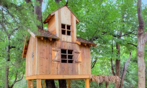 tree house_dallastx1_header