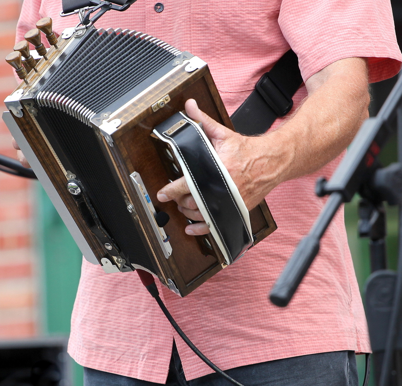 Zydeco accordion musician performing at a cajun music festival outdoors.