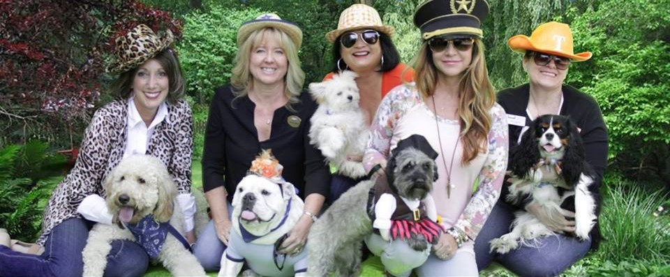 Real Estate Agents dress up with their dogs to support local humane society