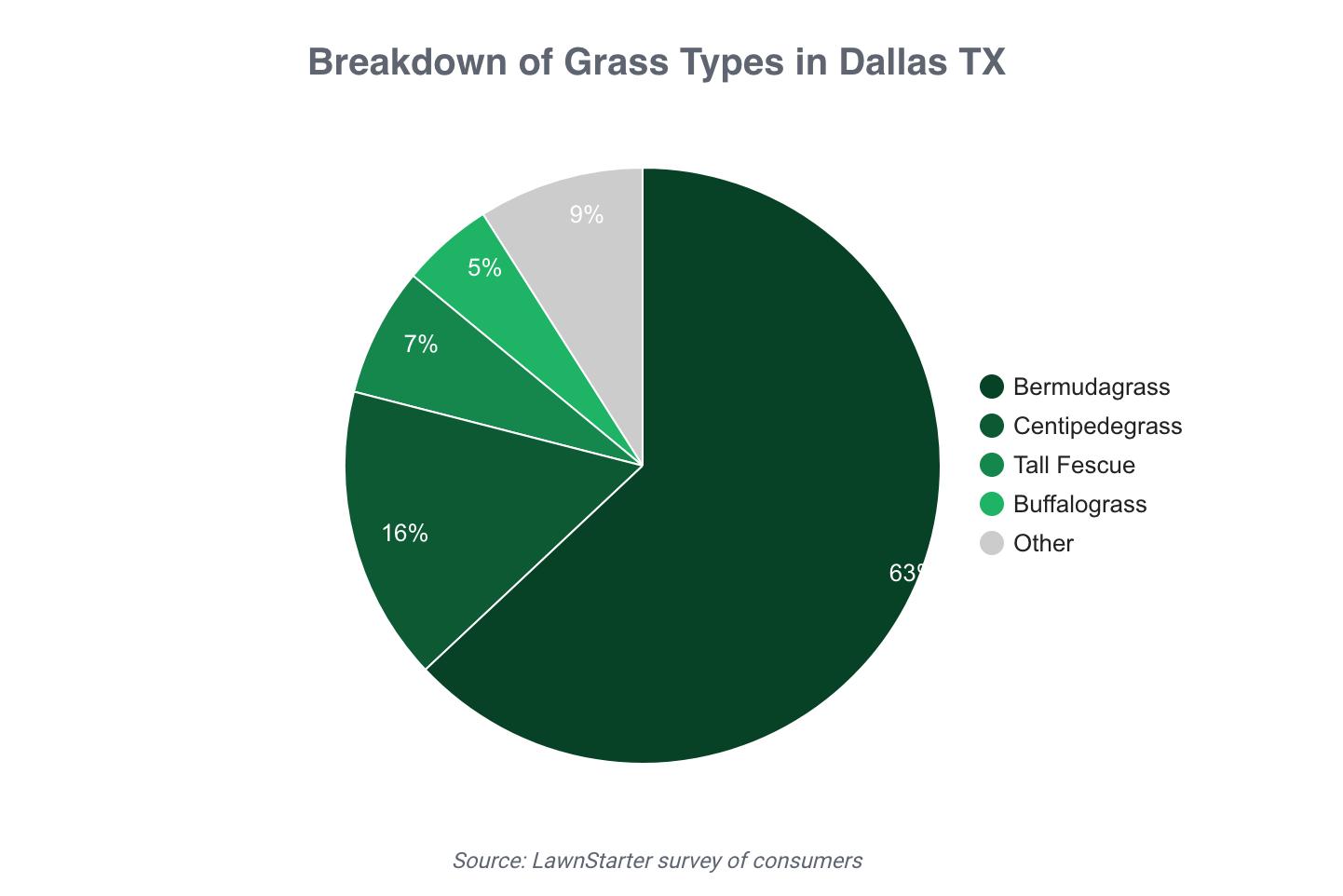 types of grass
