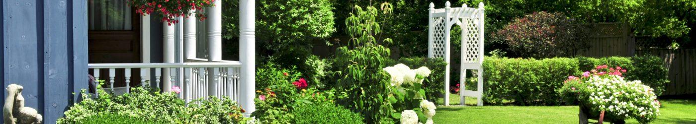 6 Steps for Designing Your Garden